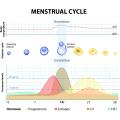 15 x David Schwangerschaftstest Streifen 10 miu/ml HCG pregnancy test